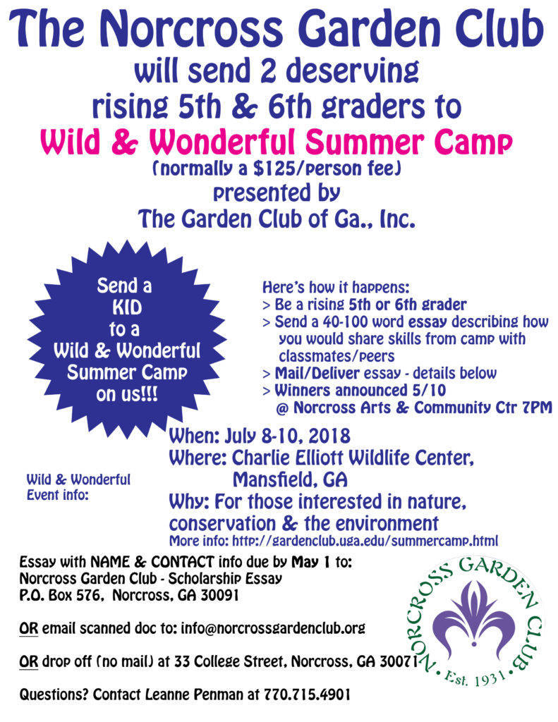 Rising 5th & 6th graders Summer Camp Scholarship Opportunity